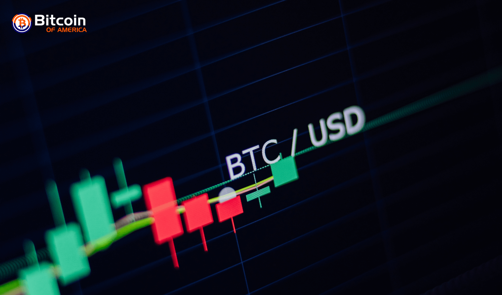 Bitcoin Sets a New Price Record for 2019