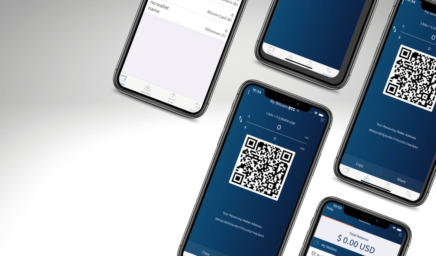 What is a Bitcoin Wallet? What Are The Options?